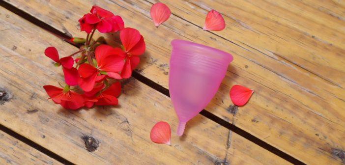 Menstrual Cups: Hello Zero Waste Periods!